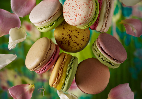 pierre herme pistachio french macaron recipe mediaquire. Black Bedroom Furniture Sets. Home Design Ideas