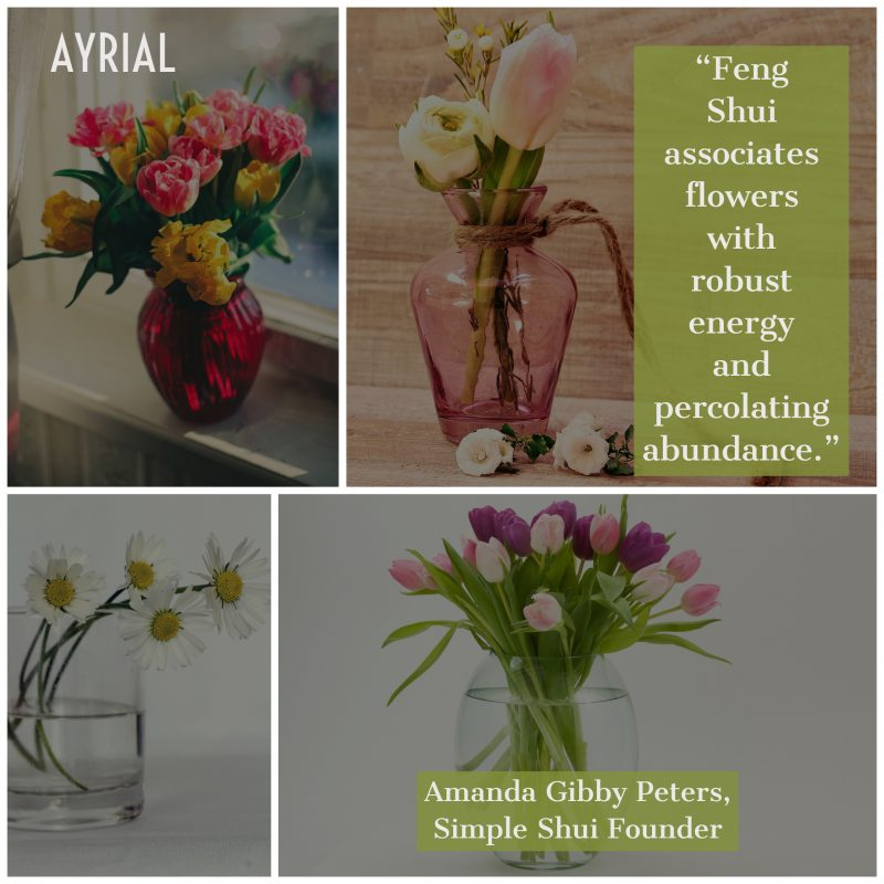 Splurging on Flowers- Amanda Gibby Peters