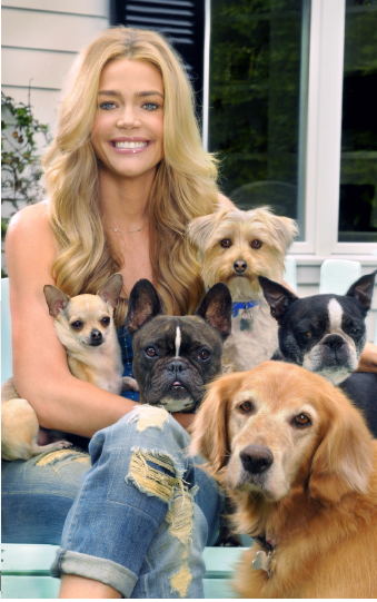 denise richards rockstar puppy neiman marcus